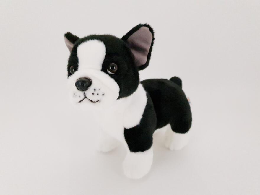 Ranskan Bulldog kävelevä 23cm UT