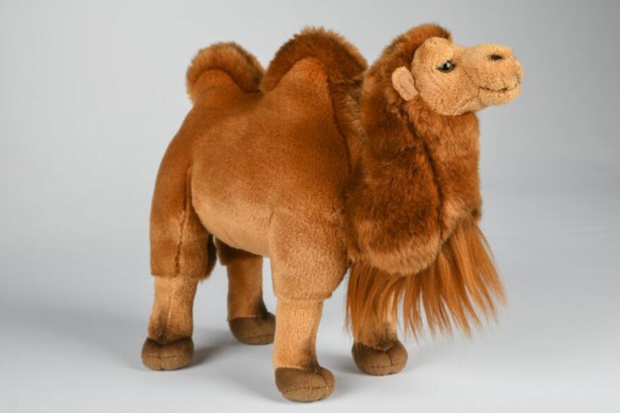 Kameli 27cm UT